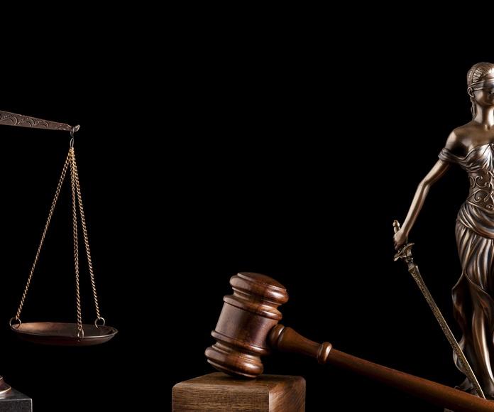 Derecho en general: Servicios de Bufete Leria y Martínez Abogados