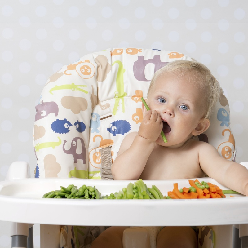 Alimentación y cuidado infantil: Farmacia  y Ortopedia de FARMACIA ORTOPEDIA CRISTINA GUMUZIO