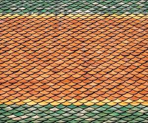 Todos los productos y servicios de Cubiertas y tejados: Todo Cubiertas Carlos Cuesta