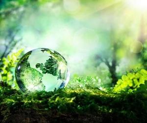 Ventajas de los productos de limpieza ecológicos
