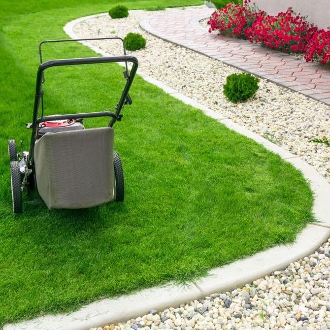Consejos para cuidar el jardín en verano