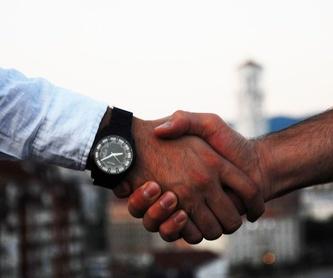 Derecho Mercantil: Servicios de Mustieles Abogados