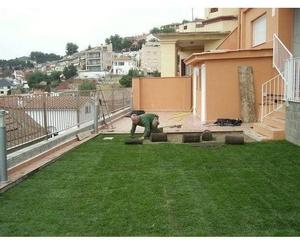 Construcción y diseño de jardines