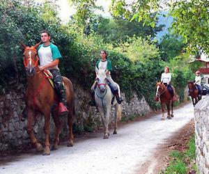 Paseos a caballo en el entorno de Cangas de Onís, Covadonga y Parque Nacional de los Picos de Europa