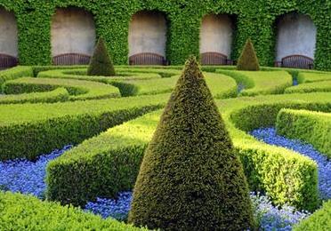 Mantenimiento integral de jardines