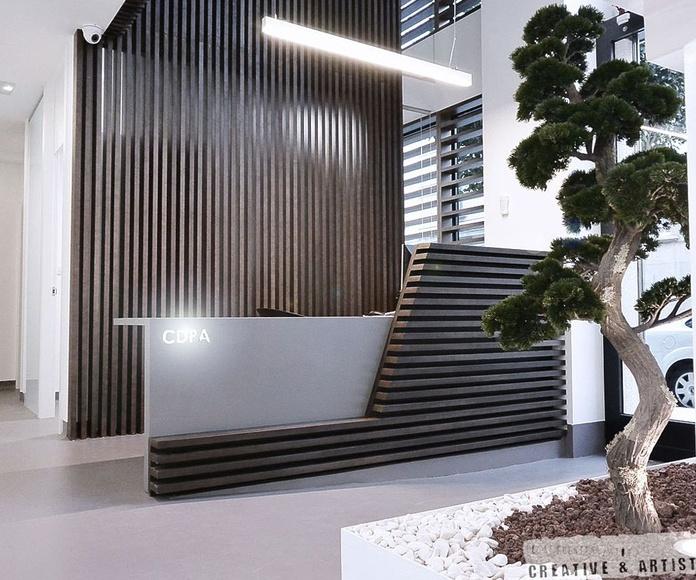 Diseño de Interiores y arquitectura: Servicios de César Fuentes Zatón