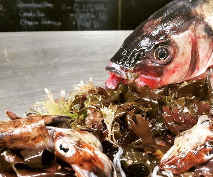 Pescados de lonja: Carta de O Lagar da Estrella