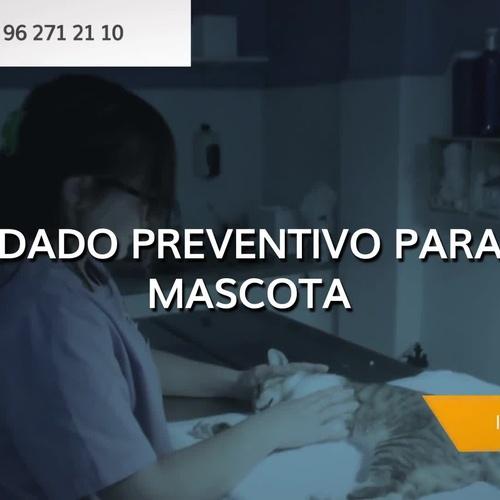 Clínica veterinaria en La Pobla de Vallbona | Clínica Veterinaria Vilavet