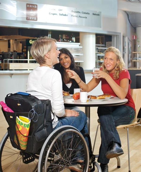 Bolsa para silla de ruedas Logic