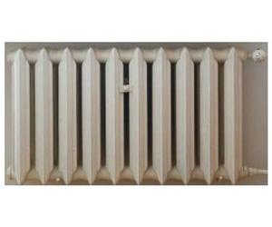 Calentadores de Gas Natural