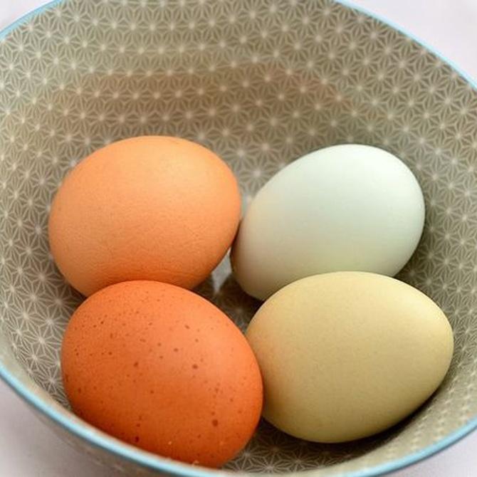 Beneficios del huevo para tu salud