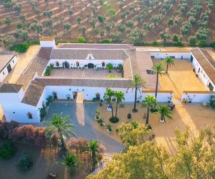 Hacienda Mendieta entre las 10 mejores fincas para bodas en Sevilla