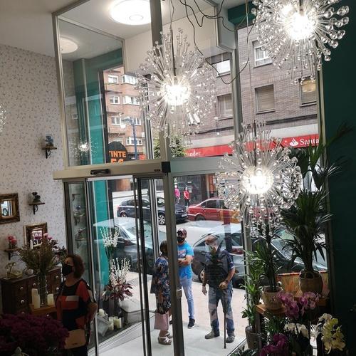 Todo tipo de plantas y flores en Gijón