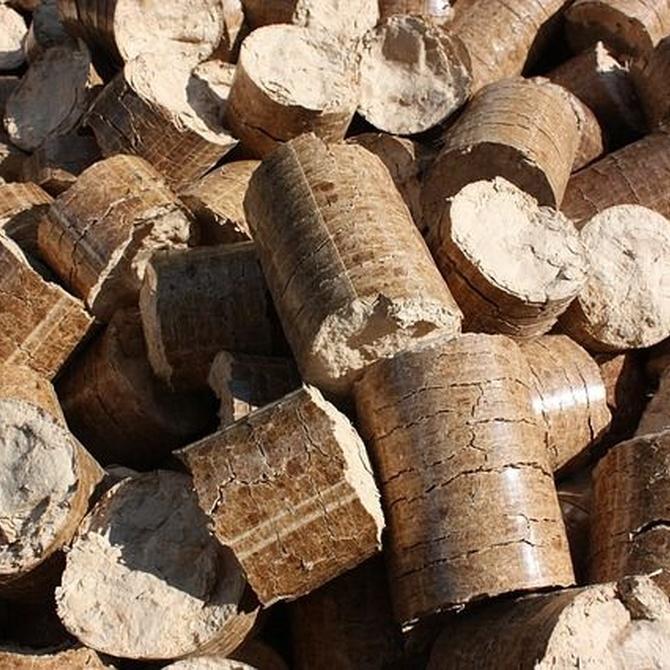 El auge de las calderas de biomasa