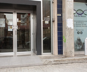 Curso de auxiliar veterinaria en Sabadell