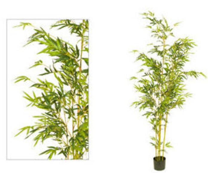 Árbol bambú yellow 180cm W1309