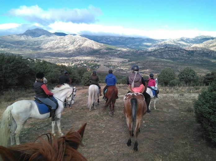 Paseo de 3 horas por la Sierra de Guadarrama.