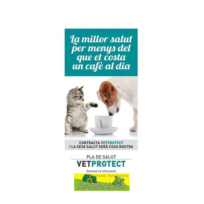 Planes de Salud: Servicios de Cv animalvet