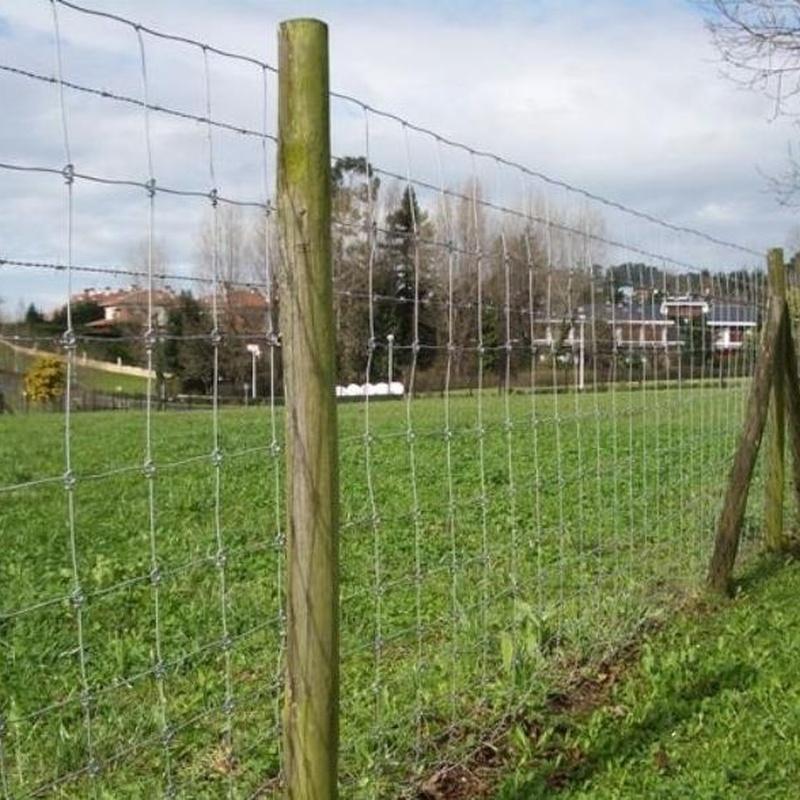 Cierres Agricolas y Ganaderos Asturias