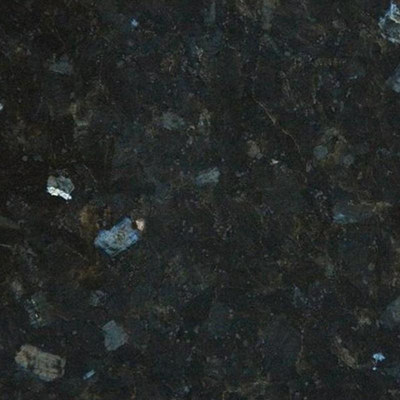Labrador Oscuro