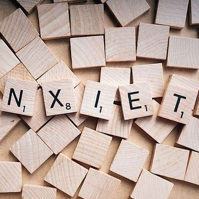 Motivos del estrés durante la mudanza