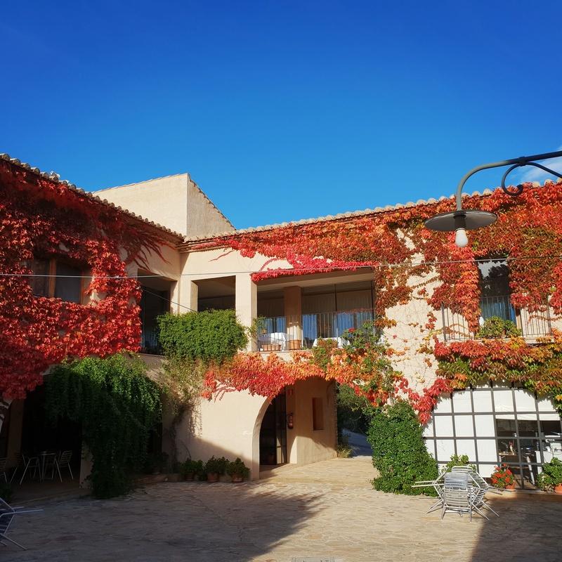Pack romántico : Nuestros servicios de Aldea Roqueta