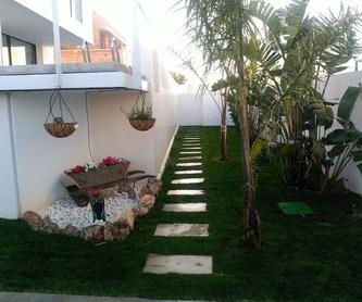 Proyectos: Servicios de Jardines Salvador