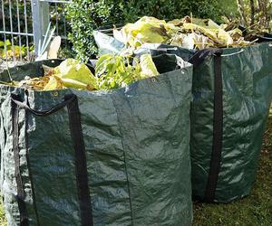 Bolsas con residuos vegetales