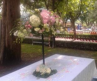 Flores Domingo de Calderas