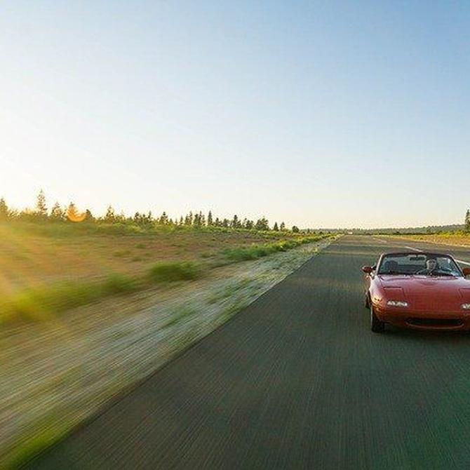 Consejos para cuidar de tu coche en verano