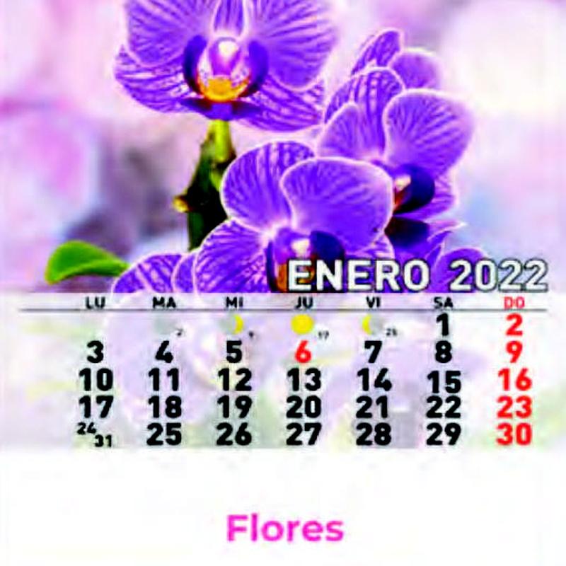 Cd ref 38 - Flores: Nuestros Productos de Gráficas Kalendex