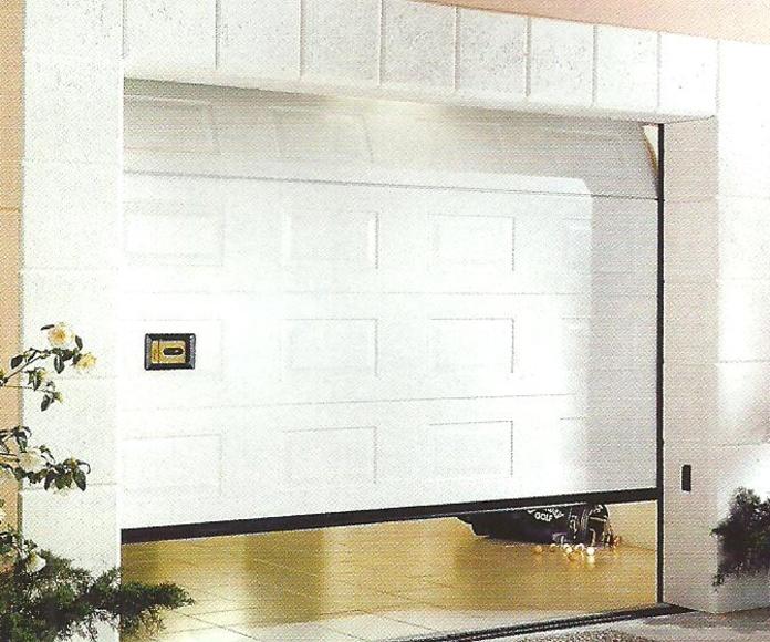 Puertas seccionales panel térmico : Servicios de Grupo del Águila