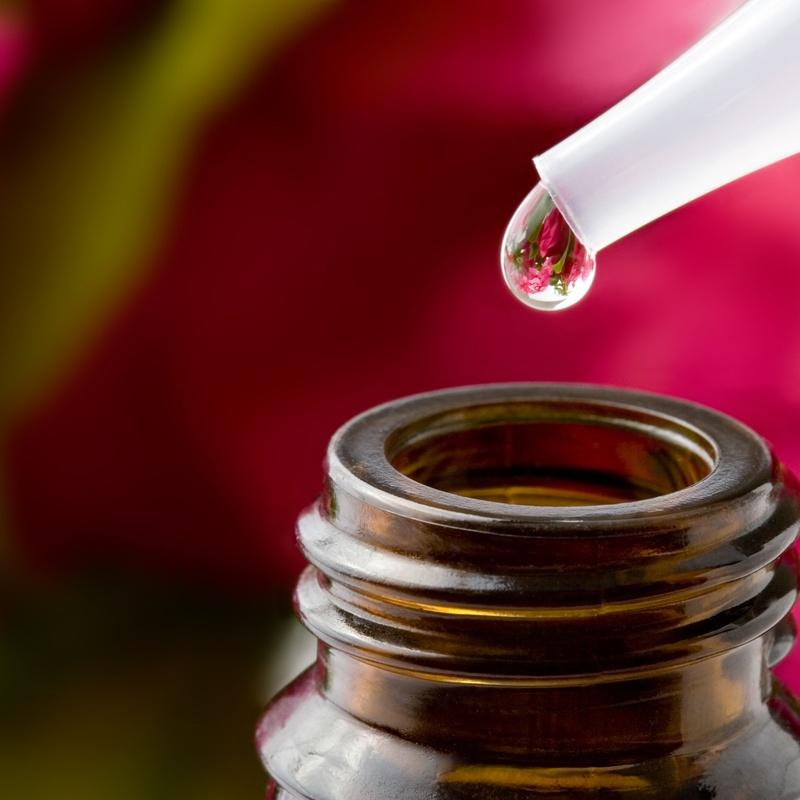 Servicio de Fitoterapia: Farmacia  y Ortopedia de Farmacia y Ortopedia Gumuzio