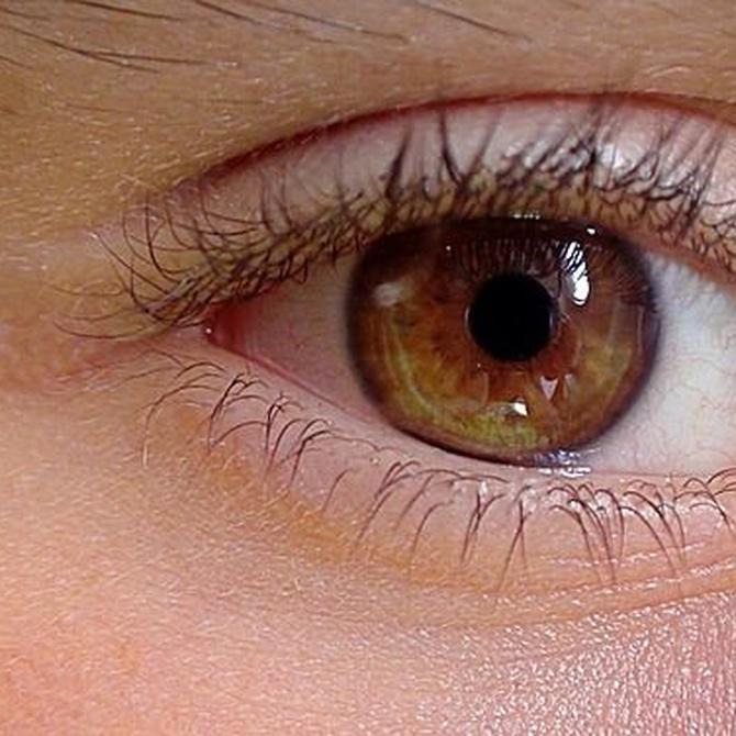 ¿En qué consiste la iridología?