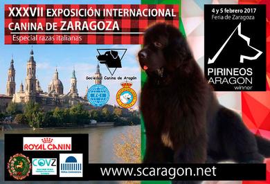 EXPOSICIÓN INTERNACIONAL ZARAGOZA