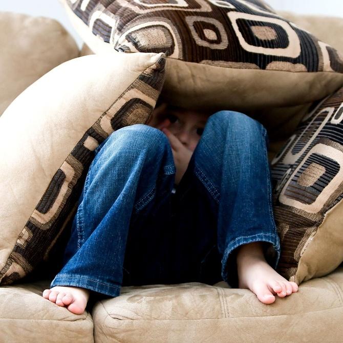 ¿Cuántos años dura un sofá?