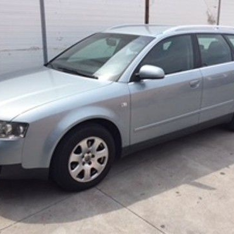 AUDI A4 AVANT 1.9 TDI: Coches de Evolutions Cars
