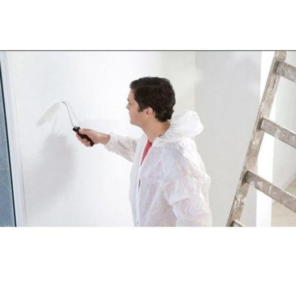 Pintura: Servicios de López Barreiro