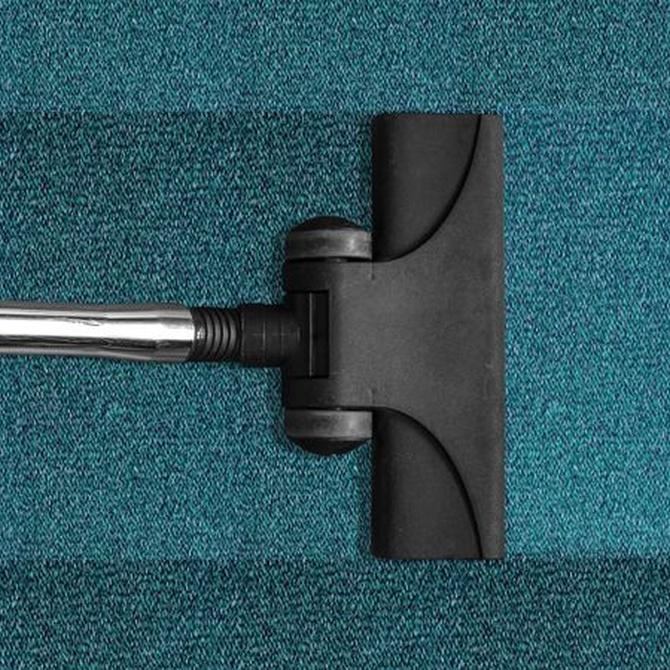 ¿Cómo se limpia una moqueta?