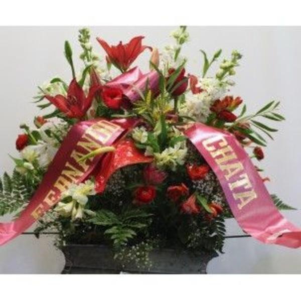 Arreglos funerarios: Catálogo de Flores Freesia
