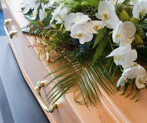 Sepulturas y Cremaciones