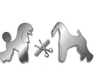Clases de peluquería canina y felina