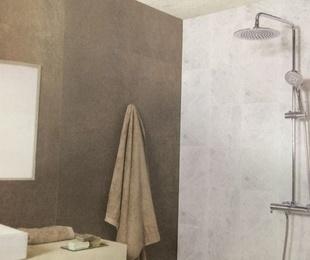 Ofertas Gran termostático Ramón Soler