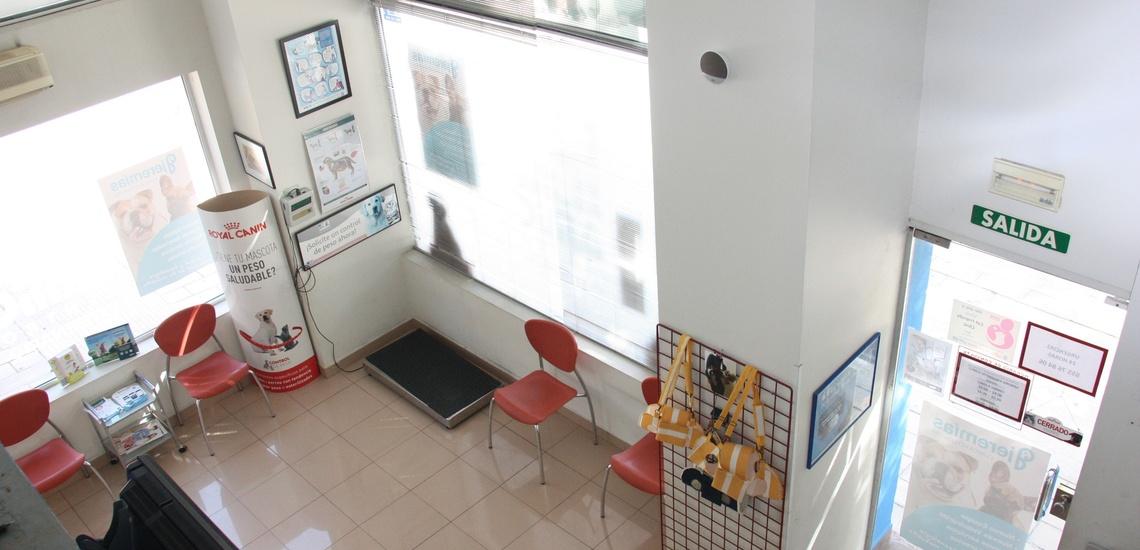 Clínica veterinaria en Alicante con instalaciones totalmente equipadas
