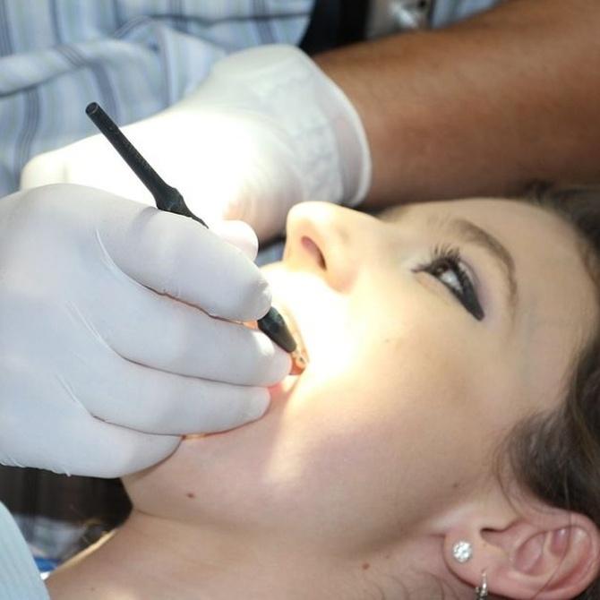 Periodoncia y endodoncia: diferencias