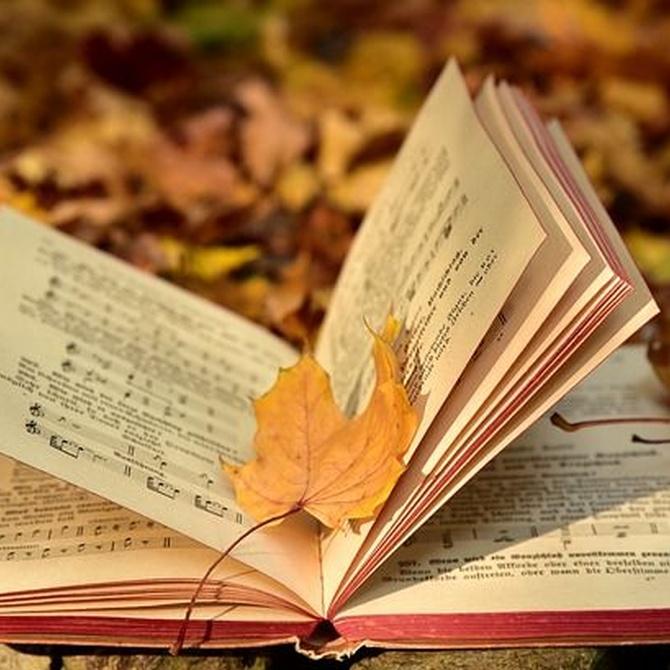 La música es poesía compuesta por notas musicales