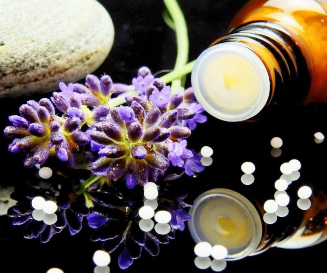 Beneficios de la homeopatía veterinaria