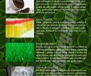 10 fertilizantes orgánicos caseros y naturales