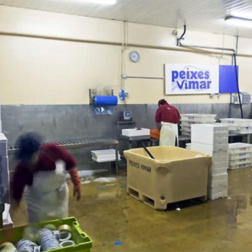 Referente en la venta de pescado de calidad