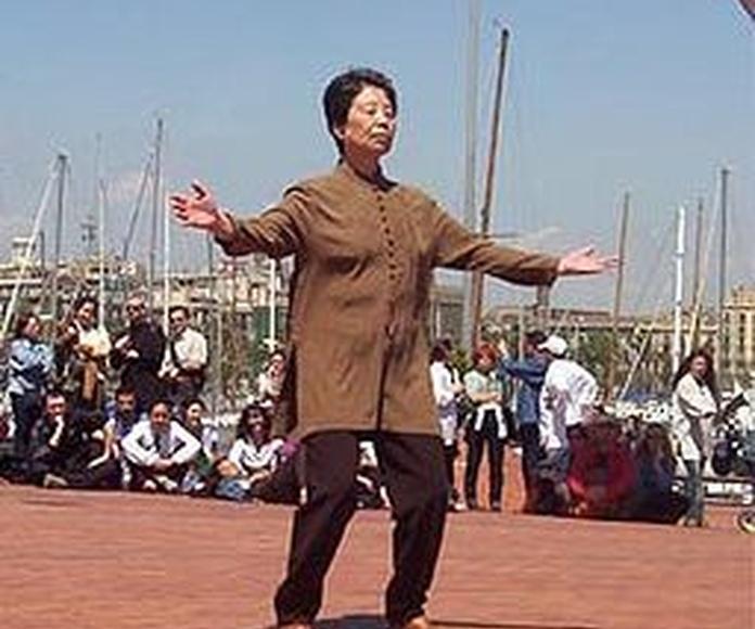 Chikung: Cursos de CENTRO SUPERIOR DE ESTUDIOS ACUCANARIAS